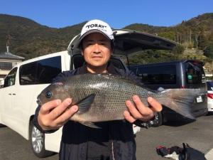 小野さん  45cm