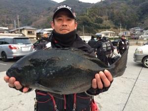 染矢さん  48cm