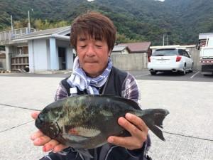 作本さん   尾長41cm