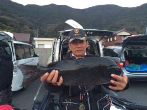 吉富さん   49.5cm