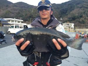 羽田野さん  44cm