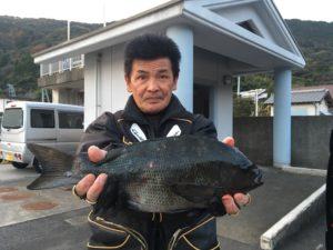 櫛川さん 42cm