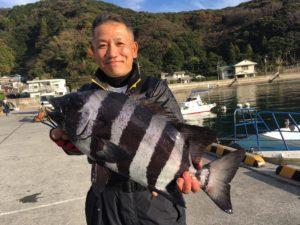 柴田さん   石鯛55cm