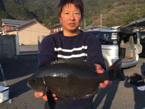 志田さん   43cm