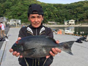 櫛川さん   45cm